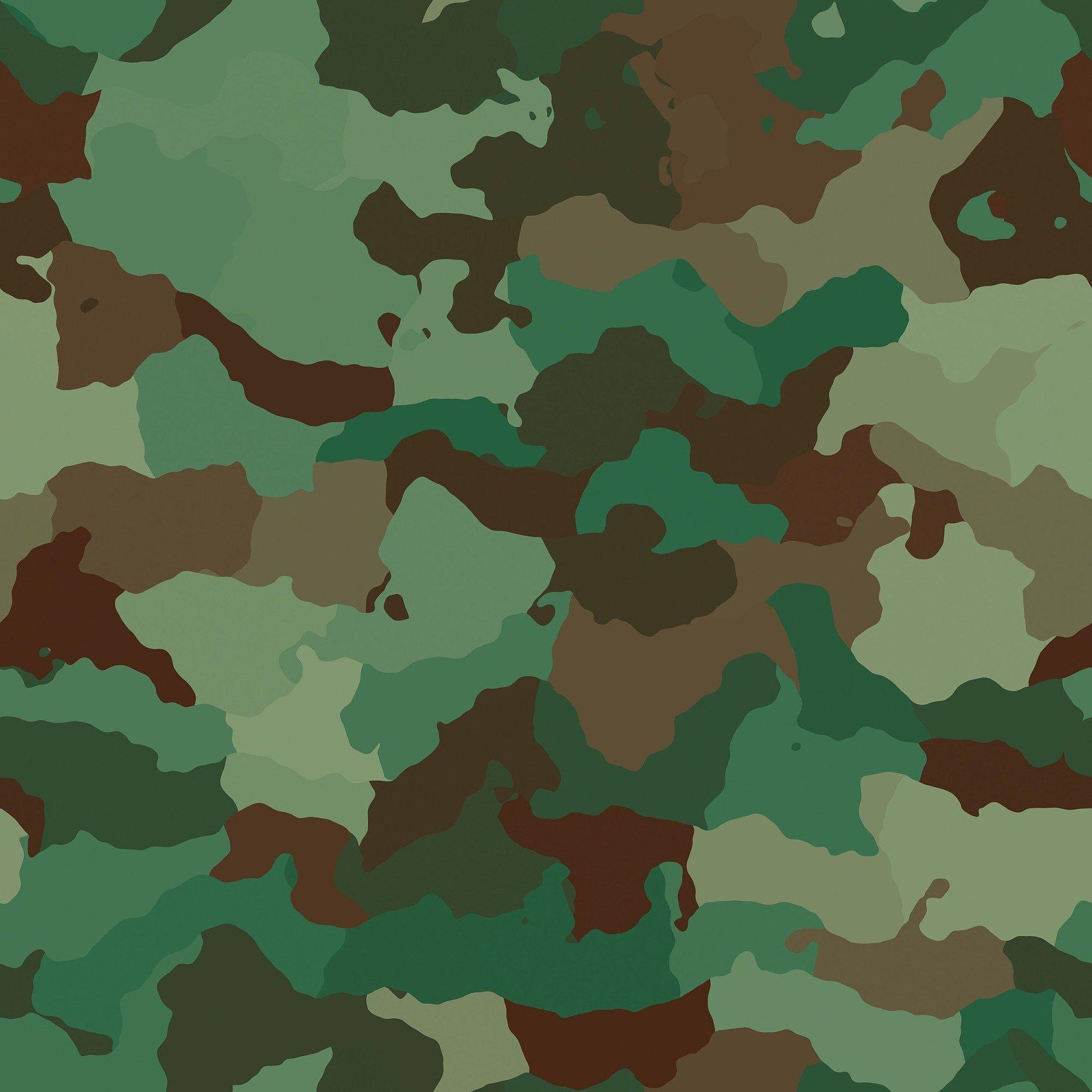 Symbolbild: Flecktarn